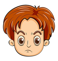 A head of an angry man vector image vector image