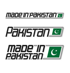 made in pakistan vector image vector image