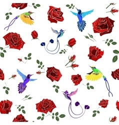 Exotic colibri birds with rose flowers colorful on vector