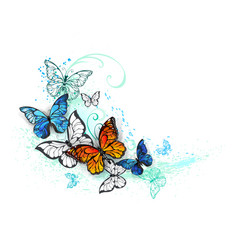 artistic morpho and monarchs vector image