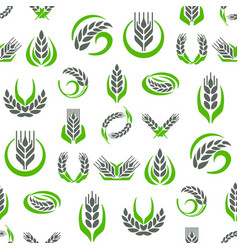 Cereal ears and grains agriculture industry vector