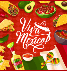 Cinco de mayo mexican holiday cuisine vector
