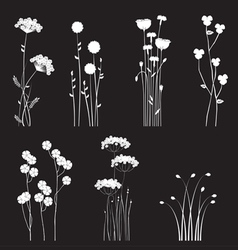 Drawing blooming flowers vector