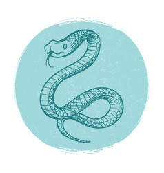 grunge design emblem with hand drawn snake vector image