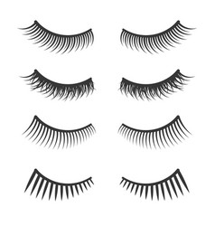 Lashes set on white background vector