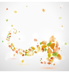 Autumn abstract background with leaves vector image vector image