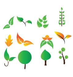 Eco floral elements vector