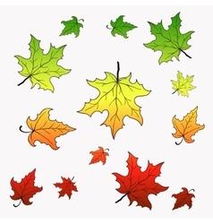 Falling maple leaves vector