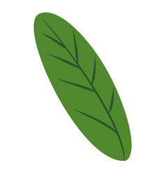 green banana leaf icon cartoon style vector image