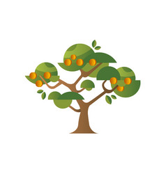 Green tree with apricots garden plant with ripe vector