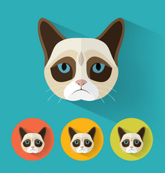 Grumpy cat portrait with flat design vector