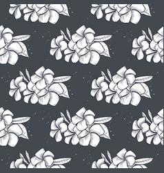 seamless pattern plumeria flowers vector image