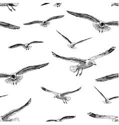 sketches flying sea birds vector image