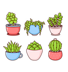 Succulents and cactus plants set collection vector