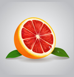 grapefruit realistic 3d with leaves vector image vector image