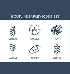 6 barley icons vector