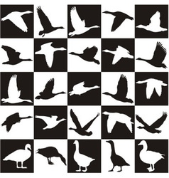 Black and white background with geese vector