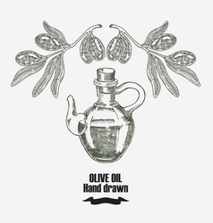 olive oil hand drawn olive tree and vector image