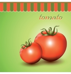 Red fresh tomatoes vector