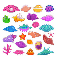 Sea shells exotic marine cartoon clam-shell vector