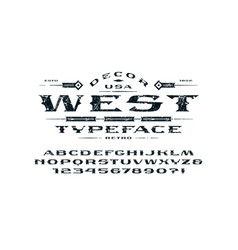 serif extended font in retro style vector image