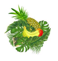 Tropical fruit banana and pineapple vector