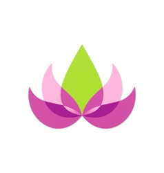 beauty lotus flower abstract logo vector image