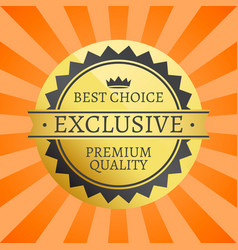 best choice exclusive premium quality label poster vector image