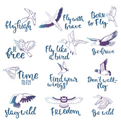 Bird lettering text fly high and flying vector