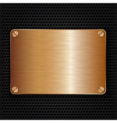 Bronze texture plate with screws vector image