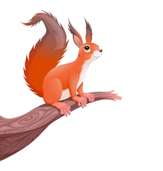 Funny squirrel on branch vector image