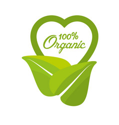 organic food fresh nutrition emblem vector image