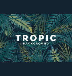tropical background 3 vector image