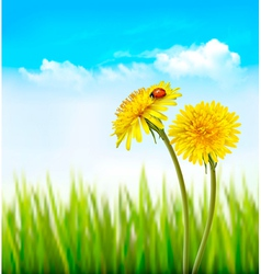 Two yellow dandelions with a ladybug on a nature vector