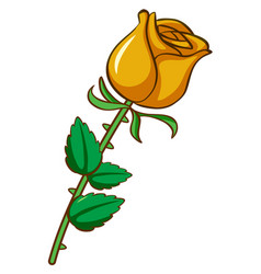 Yellow rose on white background vector