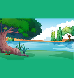 Background scene with tree lake vector