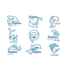 dolphine logo templates set nautical design vector image
