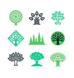 green nature tree logo eco education vector image