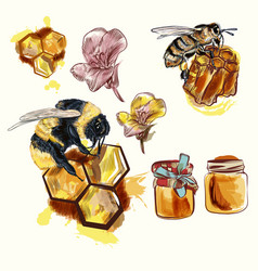 hand drawn bees and honey isolated on white vector image