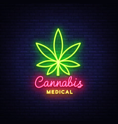 marijuana medical neon sign and logo graphic vector image