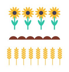 Sunflowers and wheat products vector