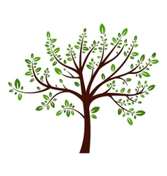 Tree summer sign vector image