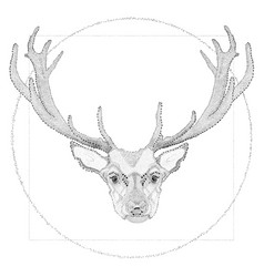 dotwork of deer vector image