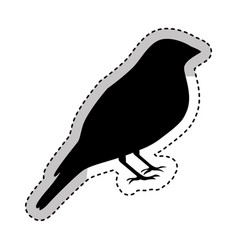 bird silhouette isolated icon vector image