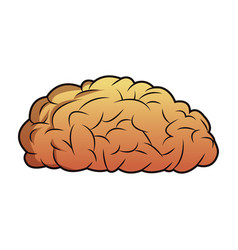 brain mind idea knowledge image vector image vector image