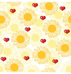 chamomile pattern vector image