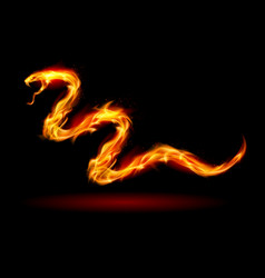 Fire snake on black for design vector