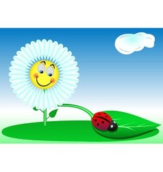 funny a flower and a ladybird vector image