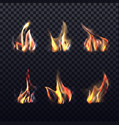 realistic flame on transparent or 3d wood vector image