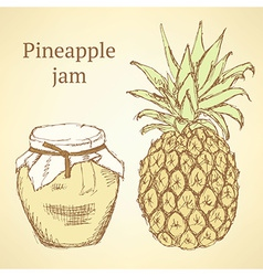 Sketch pineapple and jar in vintage style vector